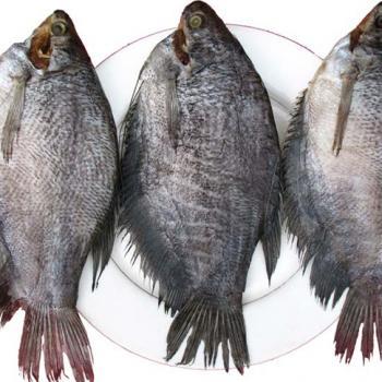 sản phẩm Khô cá sặc  - 1kg
